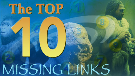top10missinglinks.jpg